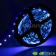Tira Ultravioleta IP65 300 LED