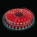 Tira LED Rojo IP65 12V
