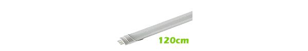 120 cm T8